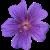 Flower icon.17 by RedqueenAllison