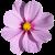 Flower icon.18