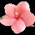 Flower icon.23