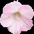 Flower icon.28 by RedqueenAllison