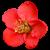 Flower icon.38