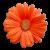 Flower icon.39