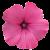 Flower icon.40 by RedqueenAllison