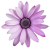 Flower icon.44