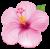 Flower icon.46