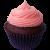 Cupcake icon.4