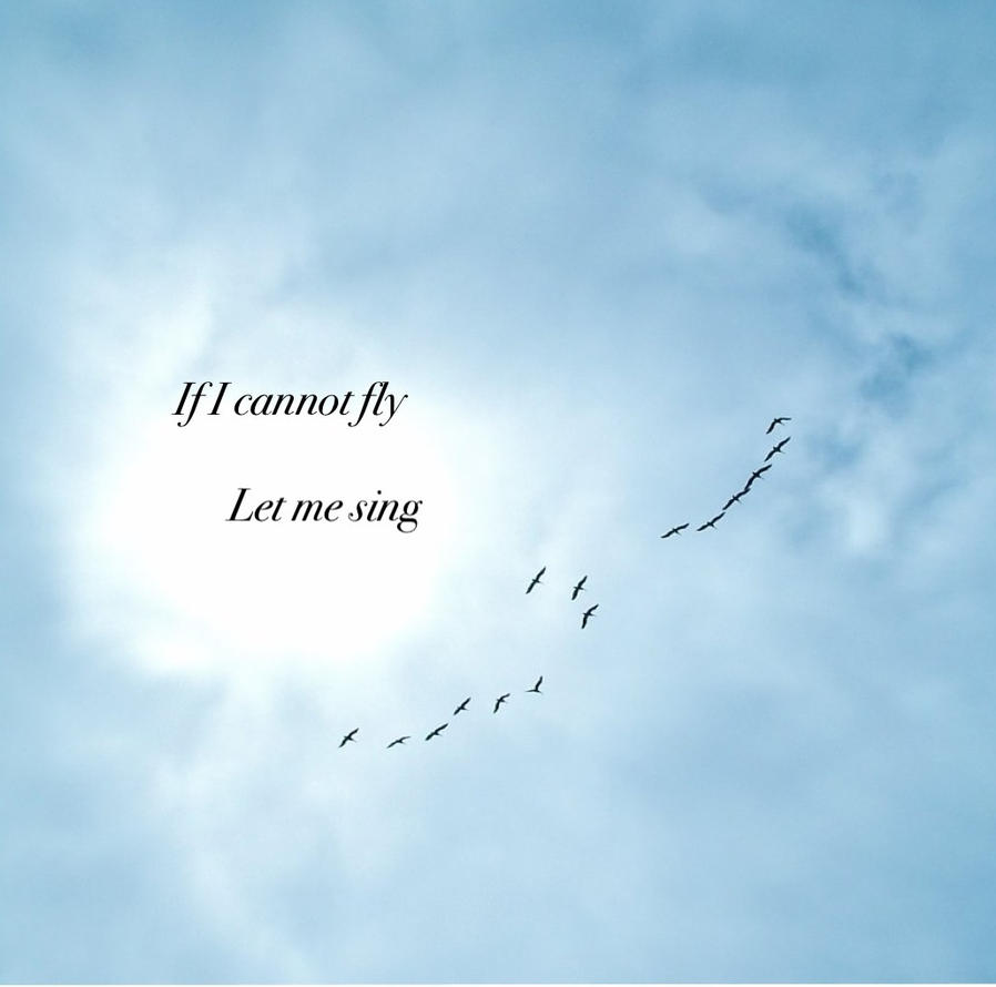 If I Cannot Fly Let Me Sing by Ukualoulou