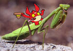 Rise of the mantis