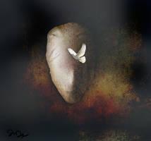 Peace of Mind... by nine9nine9