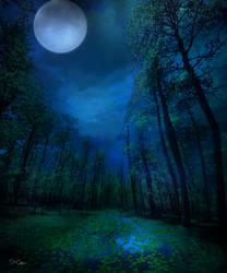 Midnight Blue by nine9nine9