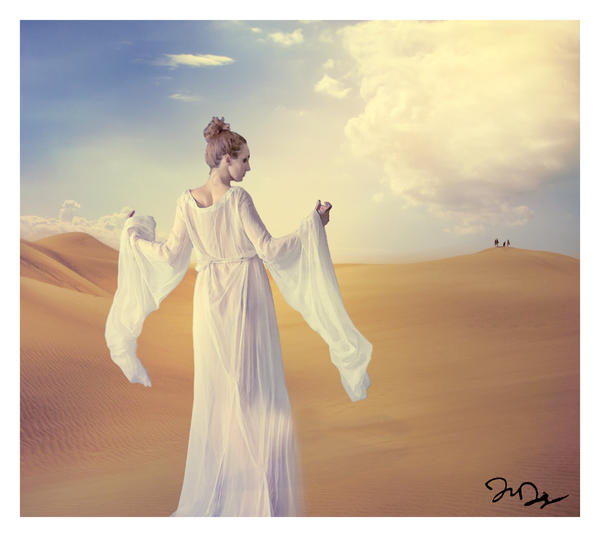 Desert Mirage by nine9nine9