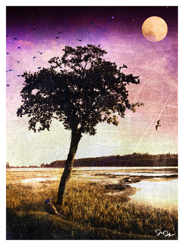 Night Falls on the Estuary by nine9nine9