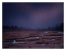 Starry Starry Night by nine9nine9