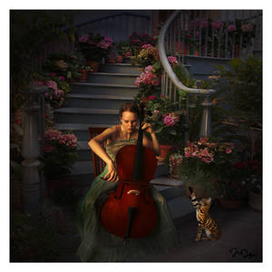 Concerto for Cello and Miss Prissy, the Bengal Cat