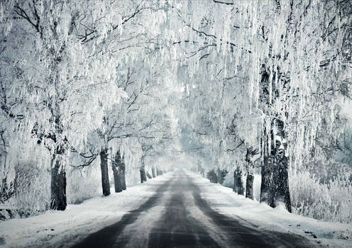 A Road Through The Winter II