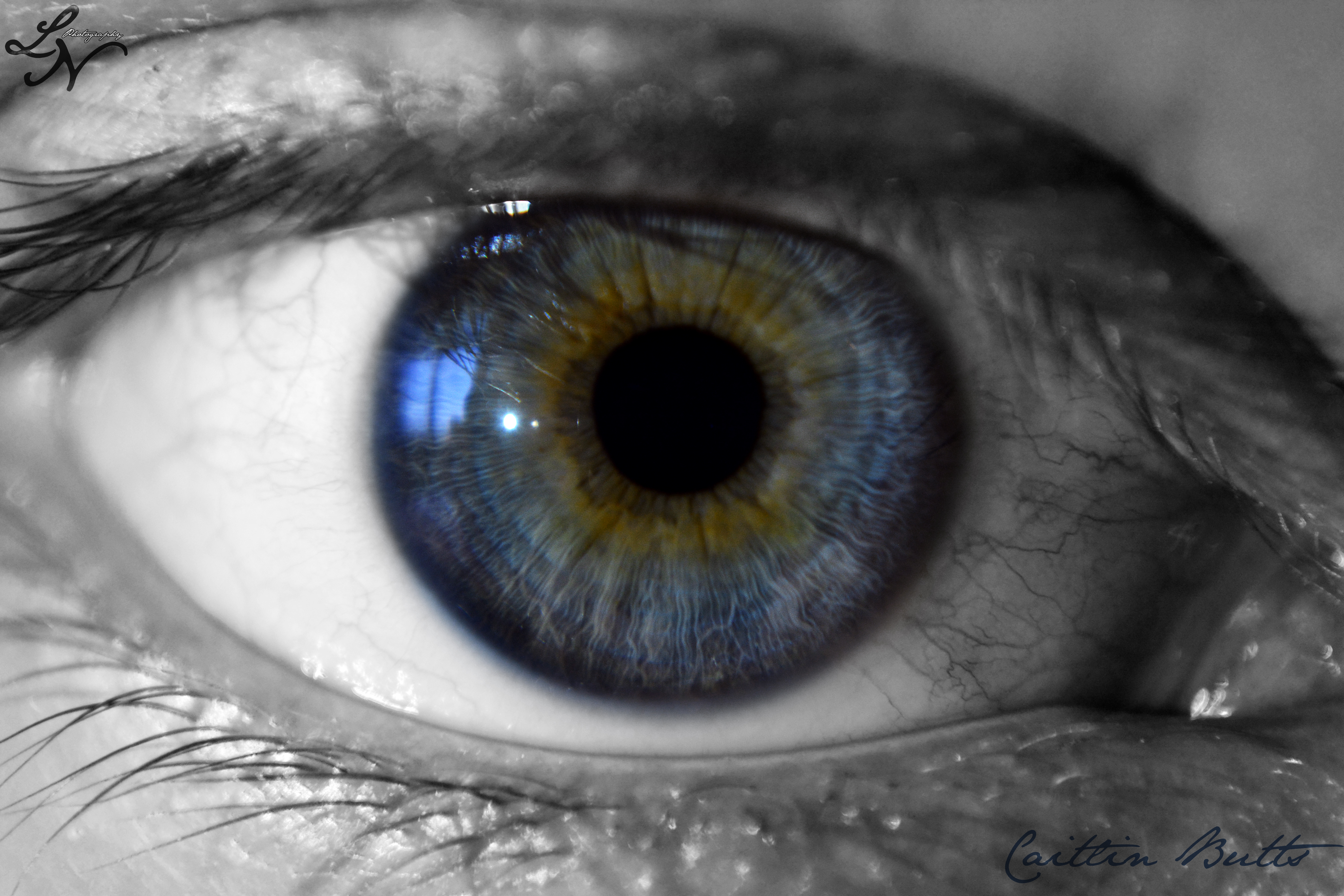 Eye Project: A touch of green by ShineeDragon