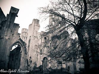 Abbaye de Jumieges VI by Sighild