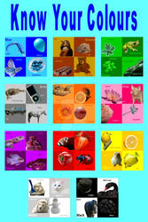 Colours Poster 1