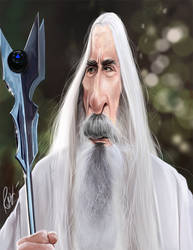Christopher Lee Lotr by rico3244