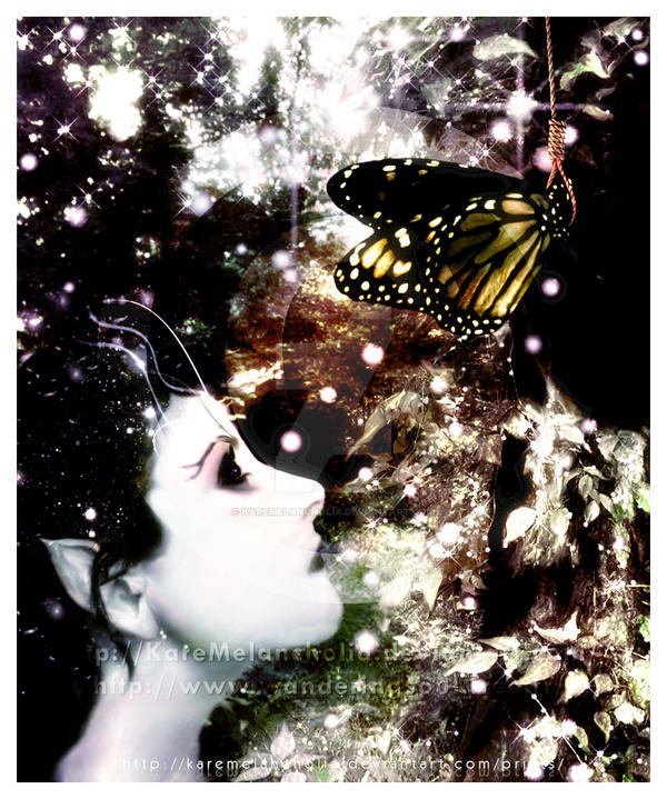 The Suicide Of The Butterfly by karemelancholia