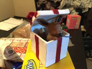 Evee-in-a-Box