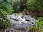 Creek (9)