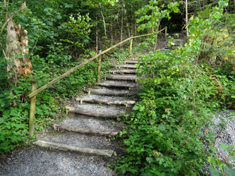 Stairs in the Forest by sott2624
