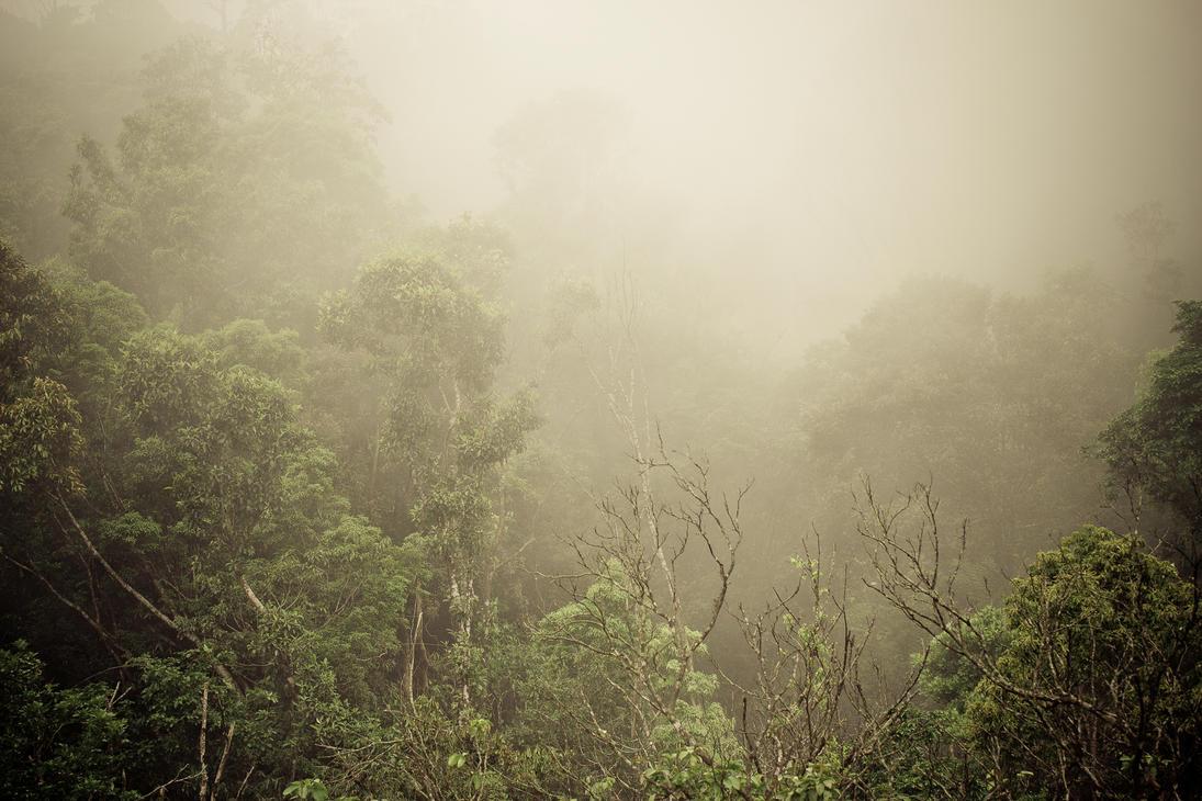Ba Na mountain in fog by dratwister