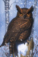 Owl by RavenseyeTravisLacey
