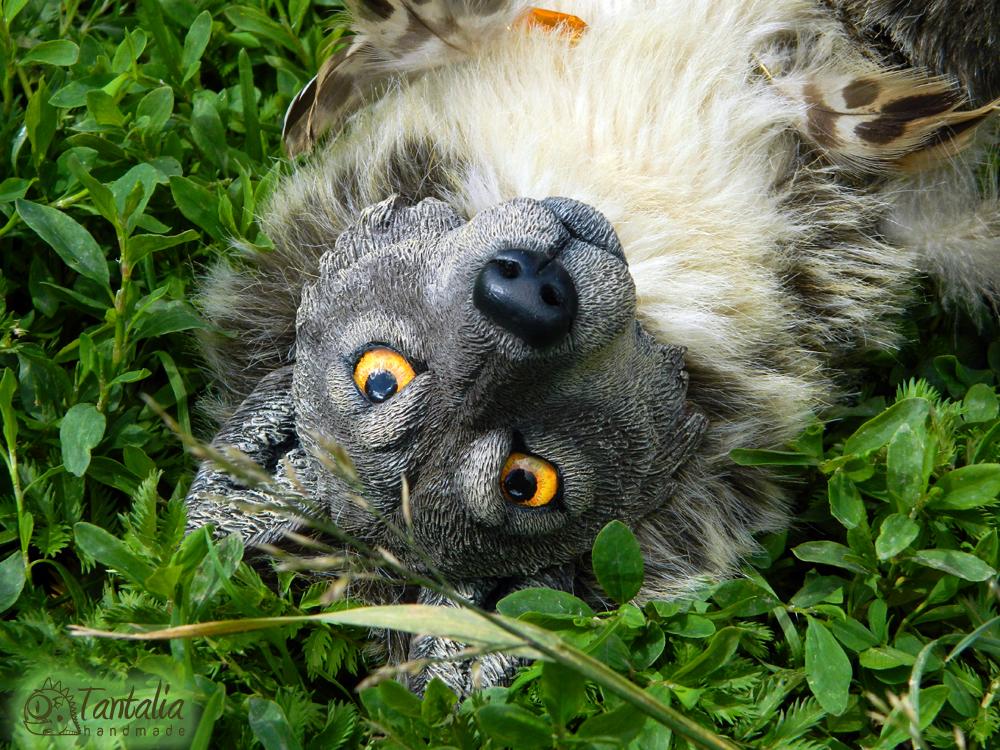 Wolf Karharot by Tantalia