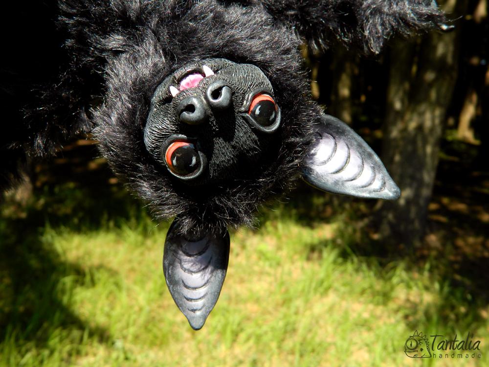 Bat Mortimer by Tantalia