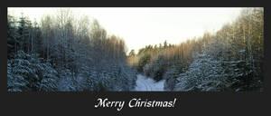 For that Christmas feeling
