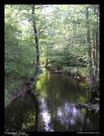 Tranquil river - natural v.