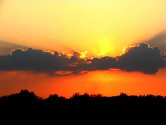 Rays of Sun by patrolski