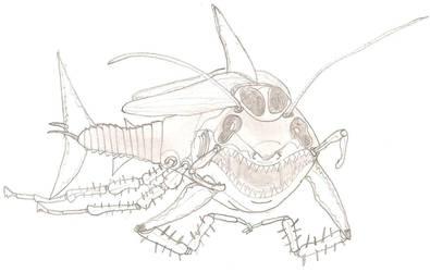 RoachShark by Shadowfox012