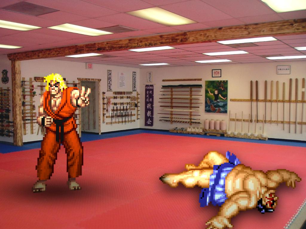 Retro Dojo 'Street Fighter' by RETROnoob