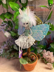 Skeletal Fairy Bug