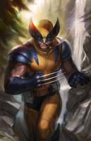 Wolverine by JoshBurns