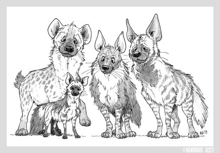 hyenas by henrieke