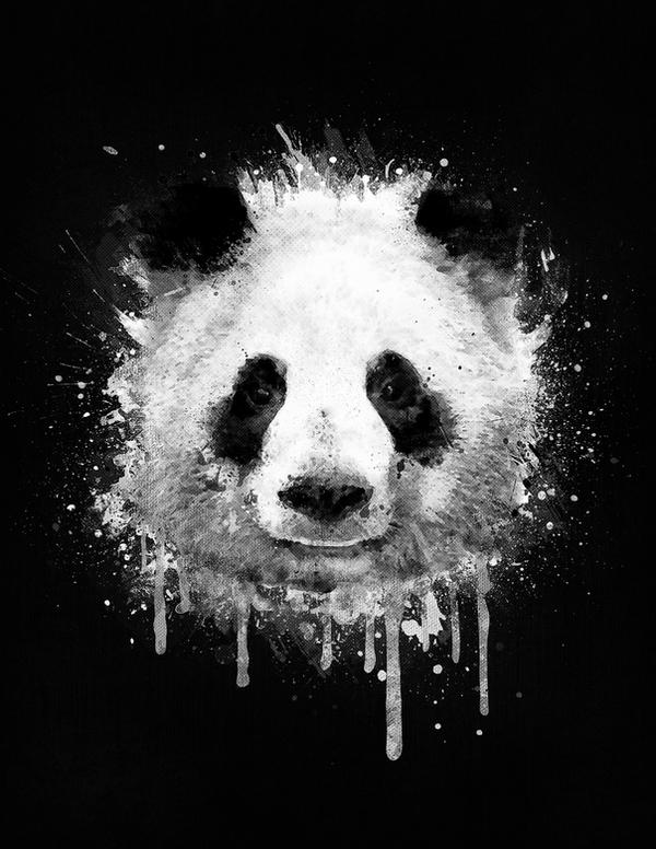 Watercolor panda portrait in black and white by mrsbadbugs