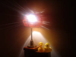 Stillife with ducks