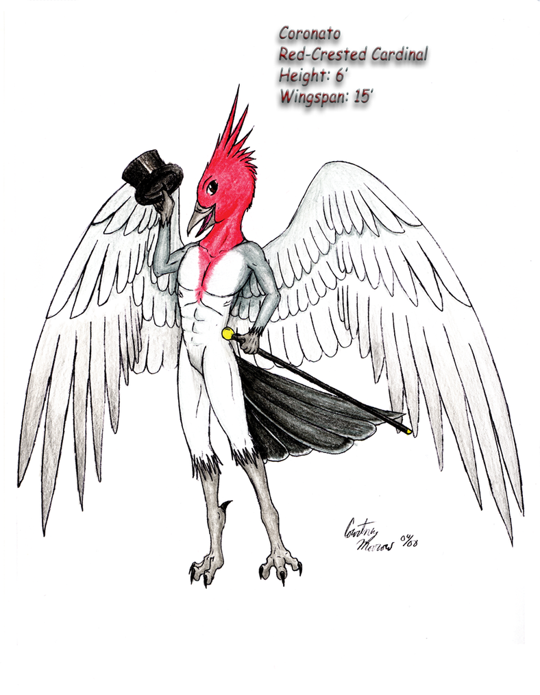 red crested cardinal anthro by chobaryu on deviantart