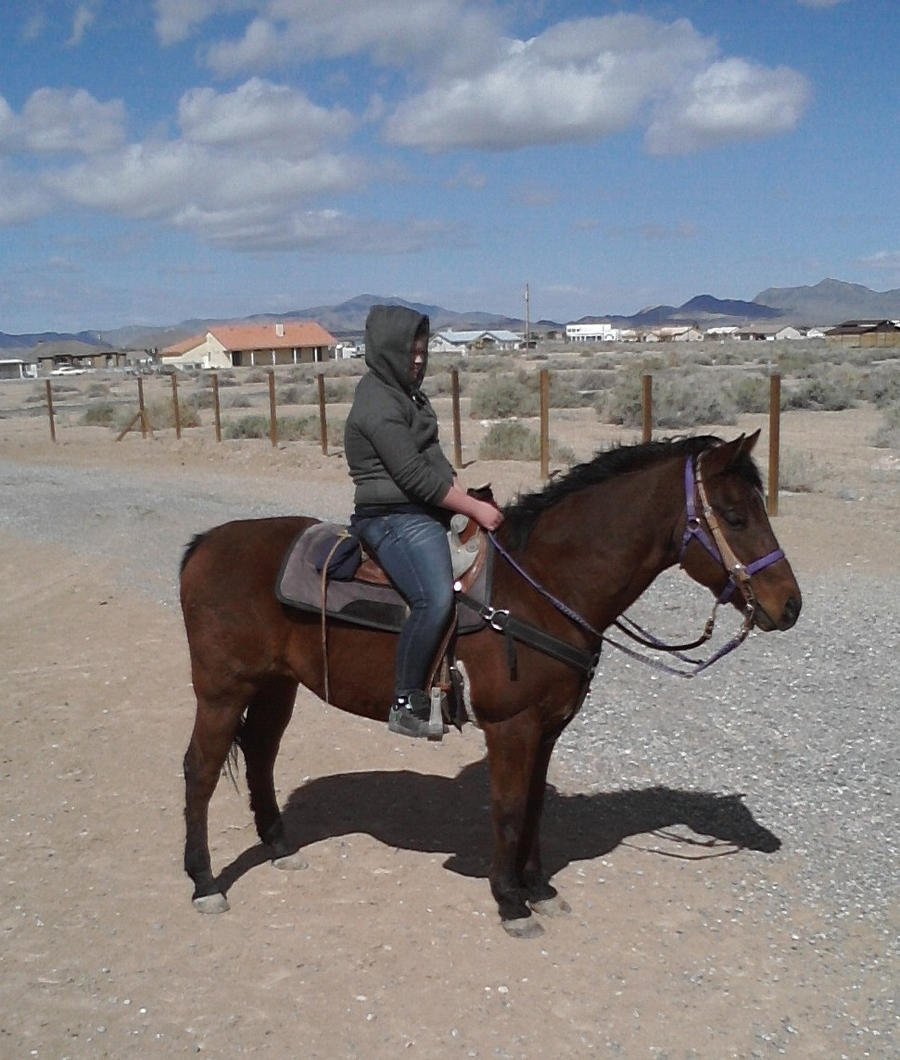 Cold ride in the Desert by AthenaIce
