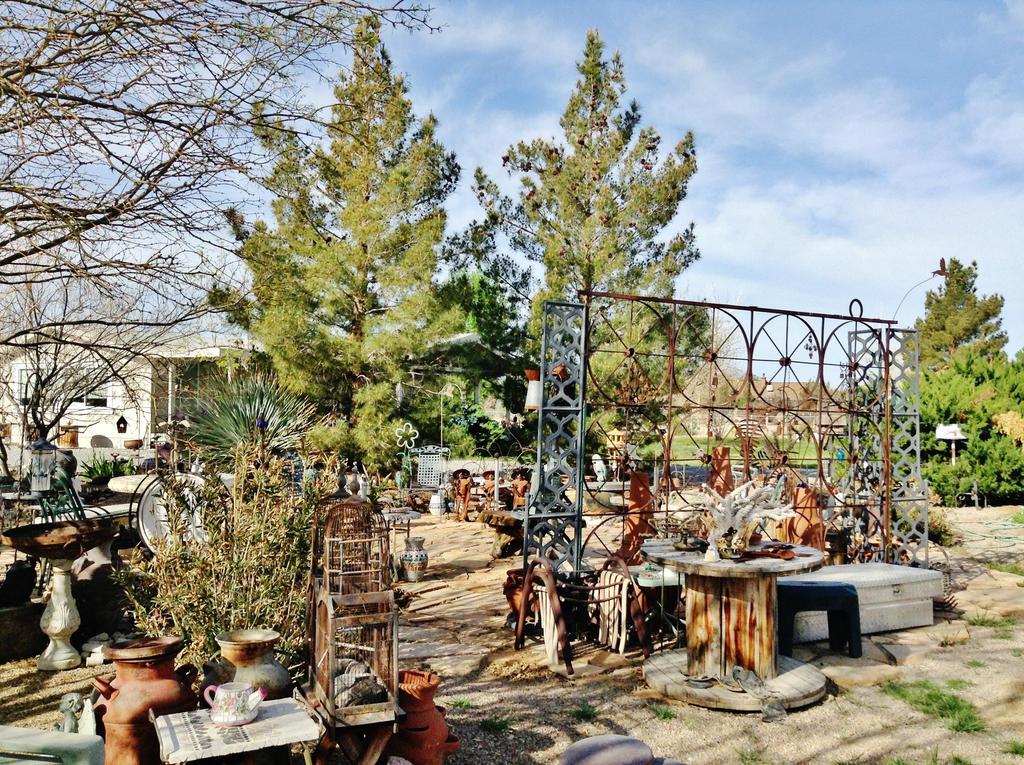 Garden Mess by AthenaIce
