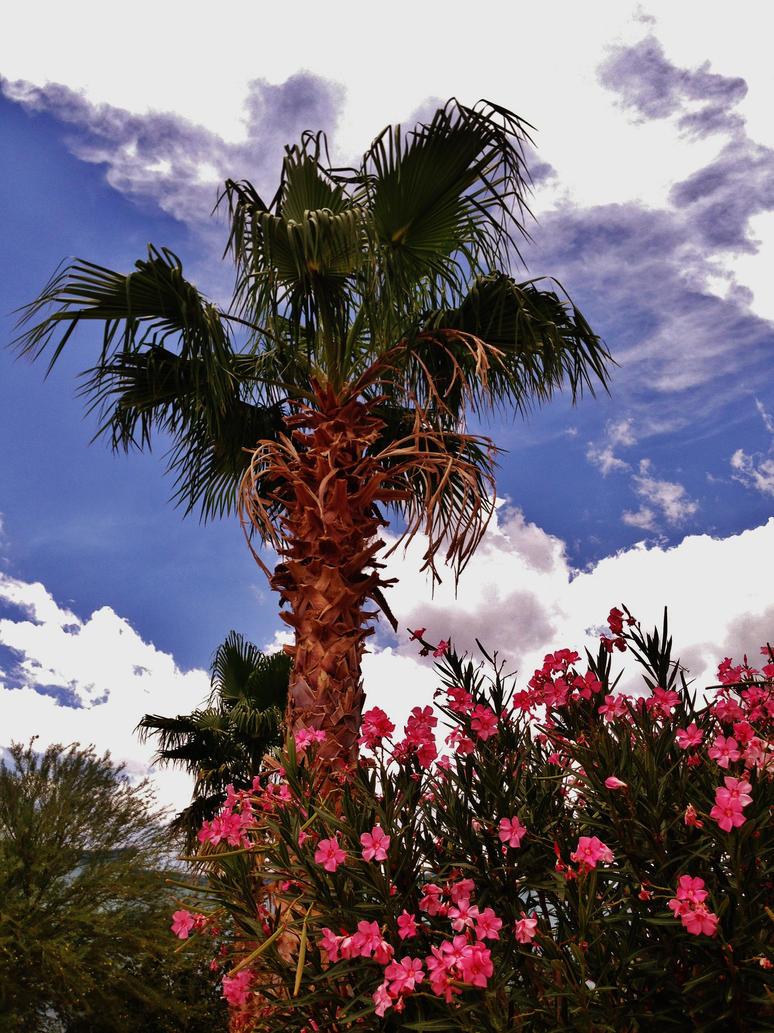 My Paradise by AthenaIce