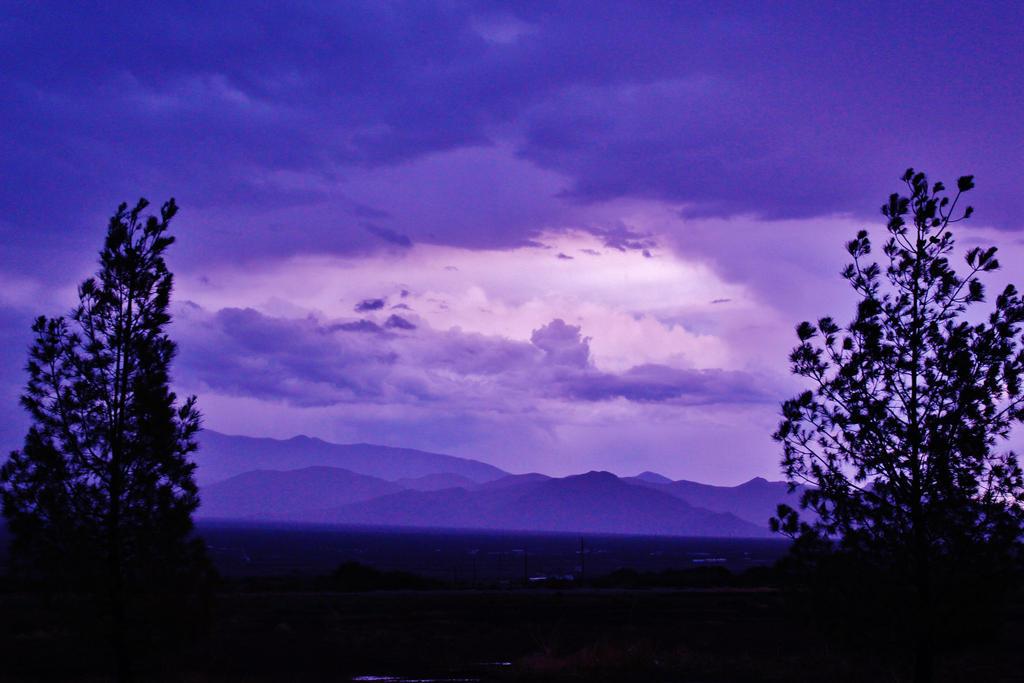 Purple Haze by AthenaIce