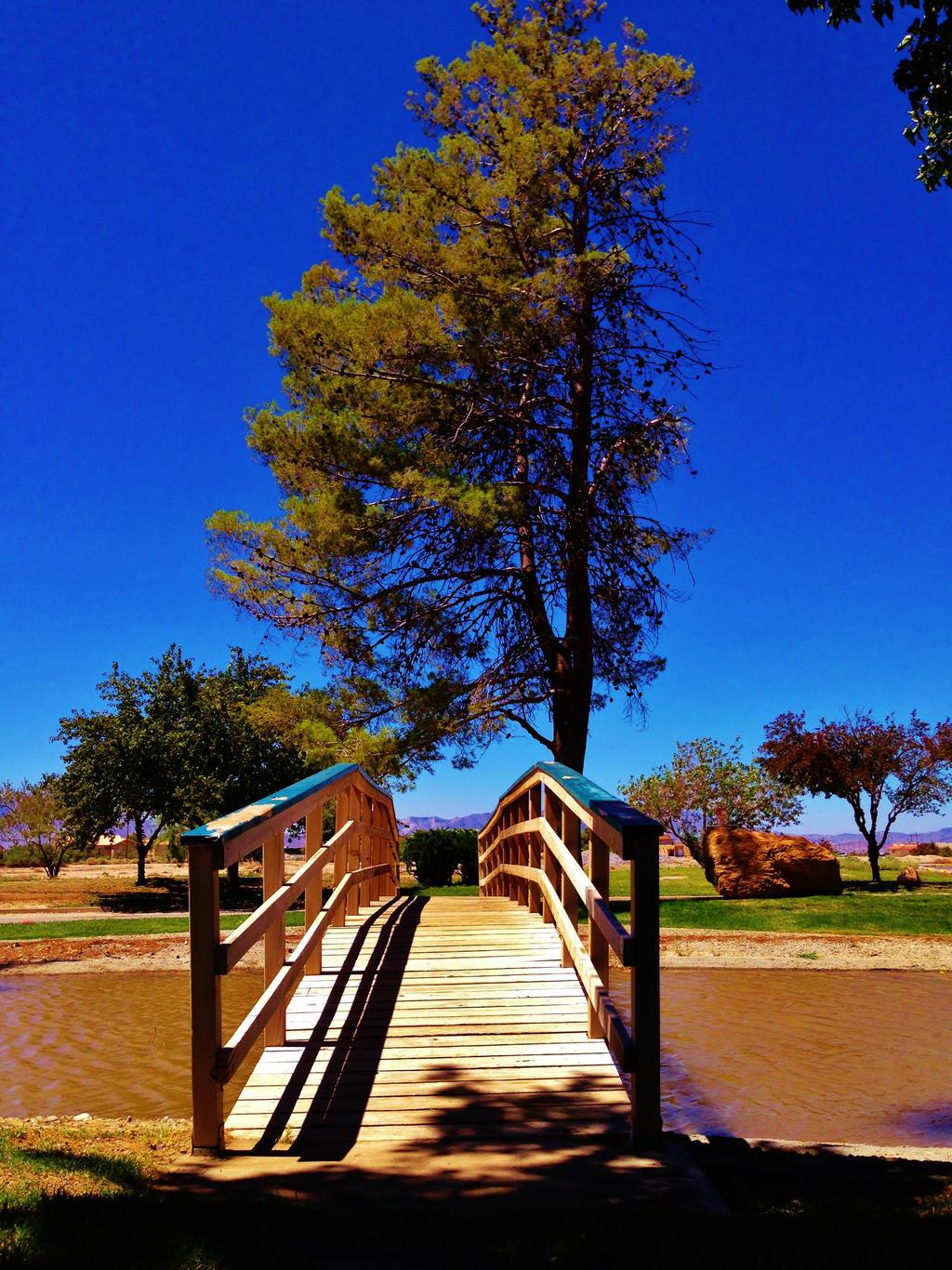 Bridge to Paradise by AthenaIce