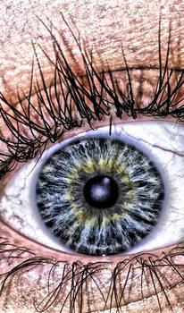 Leighann's Eye