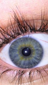 Leighann's Eye Natural