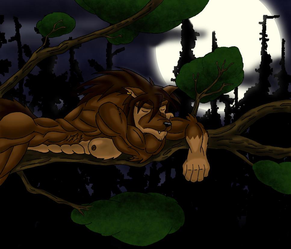 Tiempo de dormir by Cationalfa